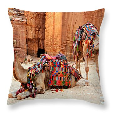 Petra Camels Throw Pillow by Stephen Stookey
