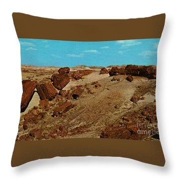 Petrified Forest National Park Throw Pillow by Ruth  Housley