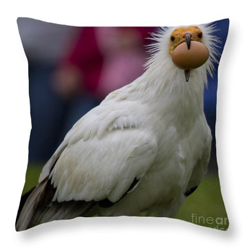 Pharaos Chicken 2 Throw Pillow by Heiko Koehrer-Wagner
