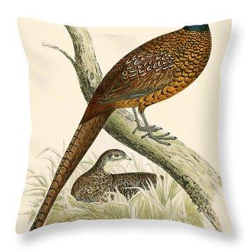 Pheasant Throw Pillow by Beverley R Morris