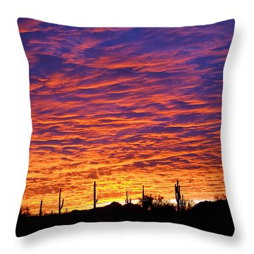 Phoenix Sunrise Throw Pillow by Jill Reger