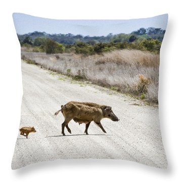 Piglet Throw Pillow by Patrick M Lynch