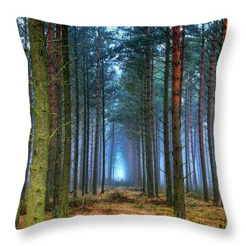 Pine Forest In Morning Fog Throw Pillow by EXparte SE