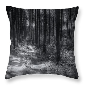 Pine Grove Throw Pillow by Scott Norris