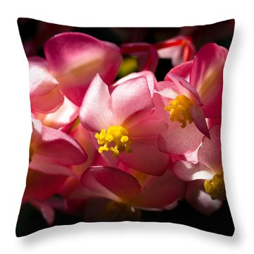 Pink Cascade Throw Pillow by David Patterson