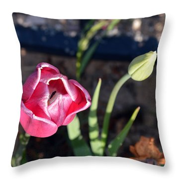 Pink Flower And Bud Throw Pillow by Brent Dolliver