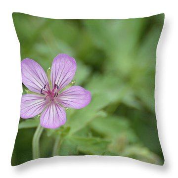 Pink Geranium In Bloom In Yellowstone Throw Pillow by Bruce Gourley