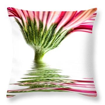 Pink Gerbera Flood 4 Throw Pillow by Steve Purnell