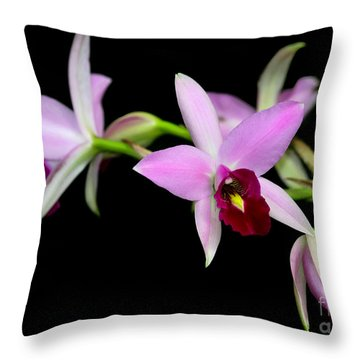Pink Orchids Cascading Throw Pillow by Sabrina L Ryan