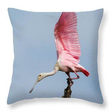 Pink Spoonbill Ready For Takeoff Throw Pillow by Bill Swindaman