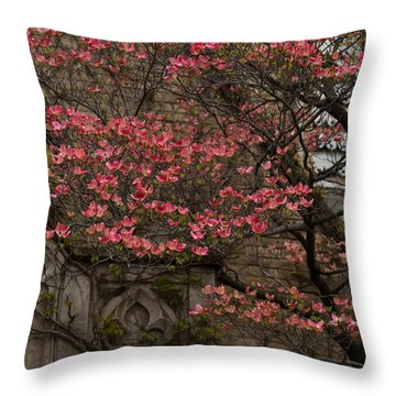Pink Spring - Dogwood Filigree And Lace Throw Pillow by Georgia Mizuleva