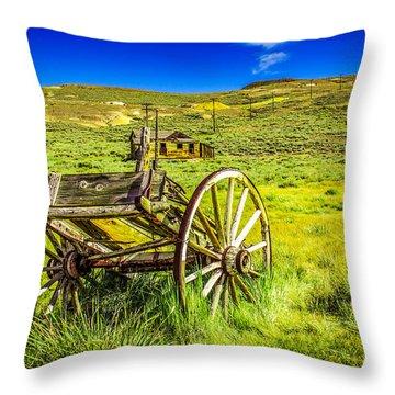 Pioneer Coach Throw Pillow by Marius Sipa