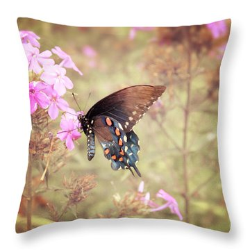 Pipevine Swallowtail Butterfly Throw Pillow by Lena Auxier