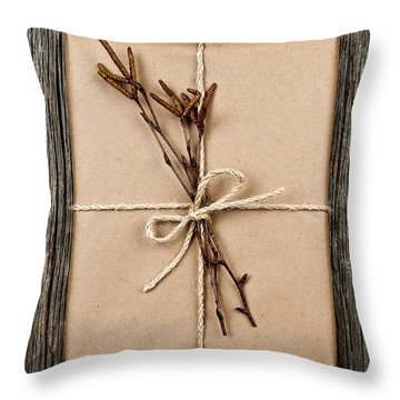 Plain Gift With Natural Decorations Throw Pillow by Elena Elisseeva