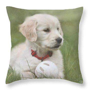 Play Ball Throw Pillow by Jayne Carney