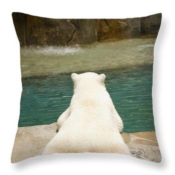 Playful Polar Bear Throw Pillow by Adam Romanowicz