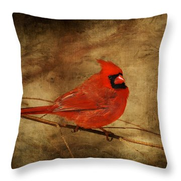 Please Feed The Birds Throw Pillow by Lois Bryan