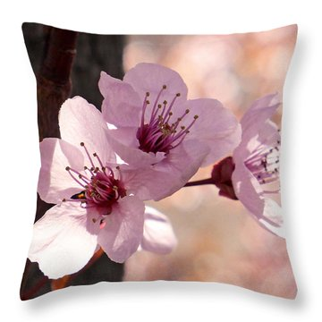 Plum Blossoms Throw Pillow by Rona Black