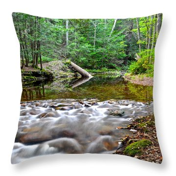 Poetic Side Of Nature Throw Pillow by Frozen in Time Fine Art Photography