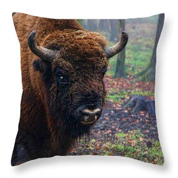 Polish Bison Throw Pillow by Mariola Bitner