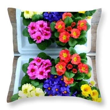 Polyanthus Primroses Throw Pillow by Will Borden
