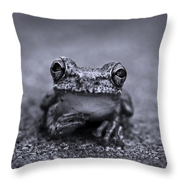 Pondering Frog Bw Throw Pillow by Laura Fasulo