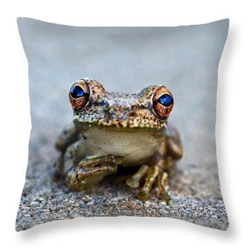 Pondering Frog Throw Pillow by Laura Fasulo