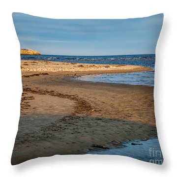 Popham Beach Curve Throw Pillow by Susan Cole Kelly