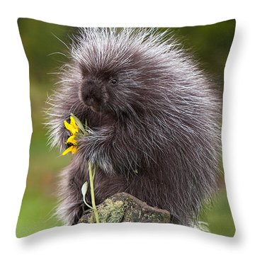 Porcupine With Arrowleaf Balsamroot Throw Pillow by Jerry Fornarotto