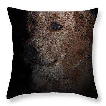 Portrait Of A Golden Throw Pillow by Bianca Nadeau