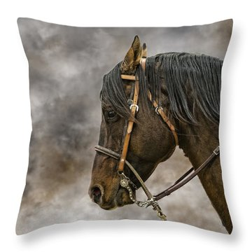 Portrait Of A Rope Horse Throw Pillow by Jana Thompson
