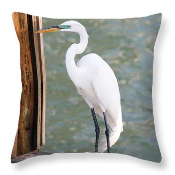 Pretty Great Egret Throw Pillow by Carol Groenen