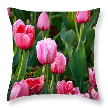 Pretty Pink Throw Pillow by Joan Bertucci