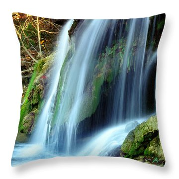 Price Falls 4 Of 5 Throw Pillow by Jason Politte