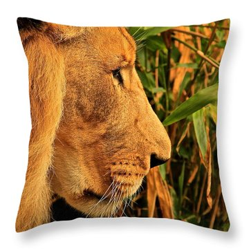 Profiles Of A King Throw Pillow by Laddie Halupa
