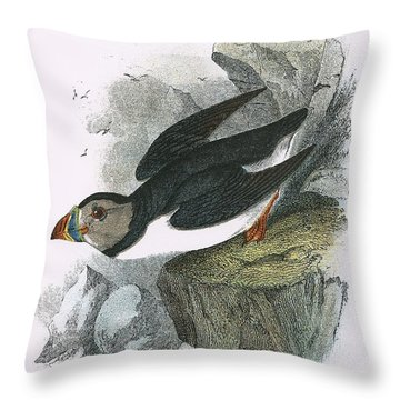 Puffin Throw Pillow by English School