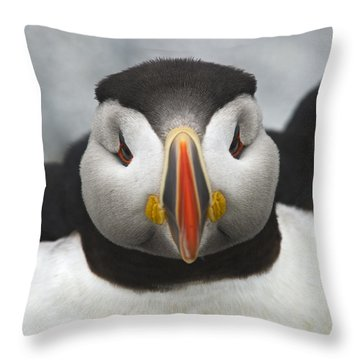 Puffin It Up... Throw Pillow by Nina Stavlund