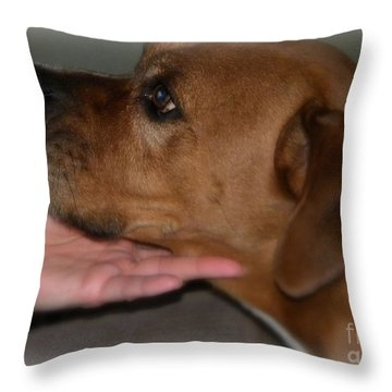 Puppy Loyalty Throw Pillow by Sandra Clark