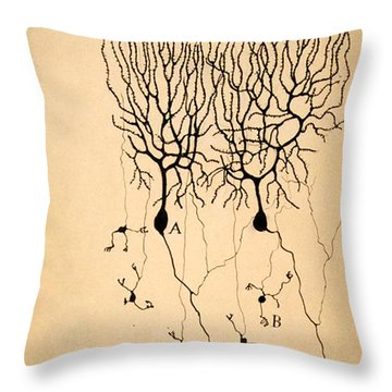 Purkinje Cells By Cajal 1899 Throw Pillow by Science Source