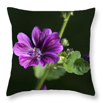 Purple Hollyhock Flowers Throw Pillow by Christina Rollo