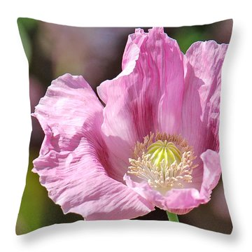 Purple Iceland Poppy Throw Pillow by Suzanne Gaff