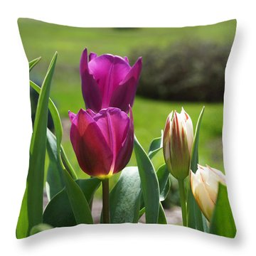Purple Tulips Garden Art Print Tulip Flowers Throw Pillow by Baslee Troutman