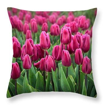 Purple Tulips Throw Pillow by Inge Johnsson