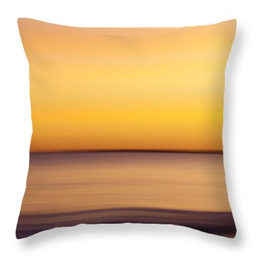 Quansoo Southwest Throw Pillow by Carol Leigh