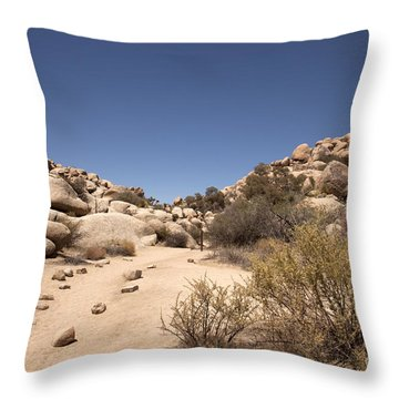 Quiet Time Throw Pillow by Amanda Barcon