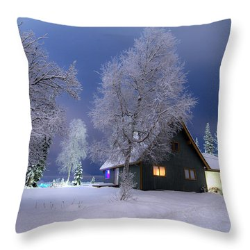 Quiet Winter Times Throw Pillow by Ron Day