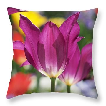 Radiant Purple Tulips Throw Pillow by Rona Black