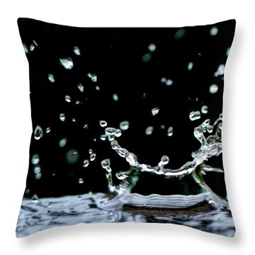 Raindrop Throw Pillow by Lisa Knechtel