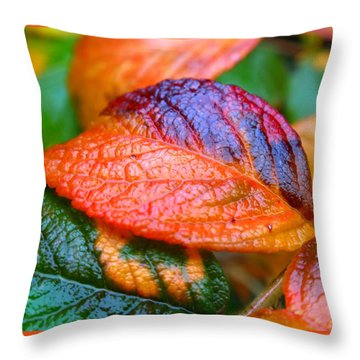 Rainy Day Leaves Throw Pillow by Rona Black