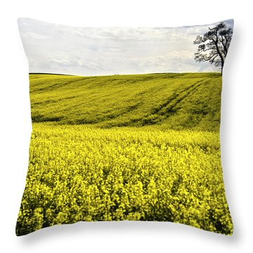 Rape Landscape With Lonely Tree Throw Pillow by Heiko Koehrer-Wagner